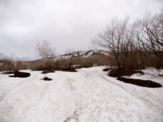 2012-4-27-Mt.iwate 2.jpg